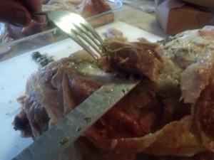 Turkey Oyster